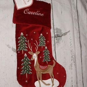 Pottery Barn Luxe Velvet Stocking 'Caroline'
